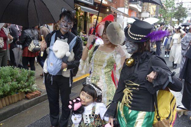 Cat Parade